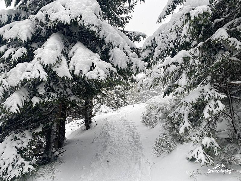 Zima szlak Kuźnice - Kasprowy